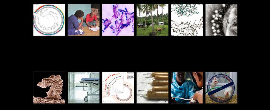 Brito Lab, microbiome, horizontal gene transfer, ilana brito