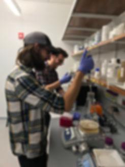 Brito lab, Ilana Brito, microbiome, Cornell University, antibotic reisance