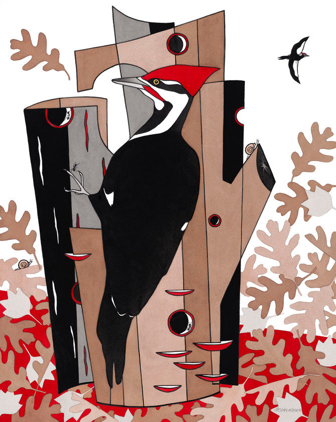 Pileated Woodpecker—The Limited Edition