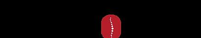 Logo_SDS.png