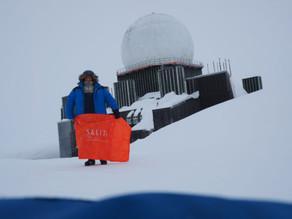 Salitas kontor på Grønland?