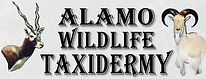 Alamo Wildlife Taxidermy Logo.jpg