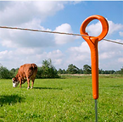Electric fence1.PNG