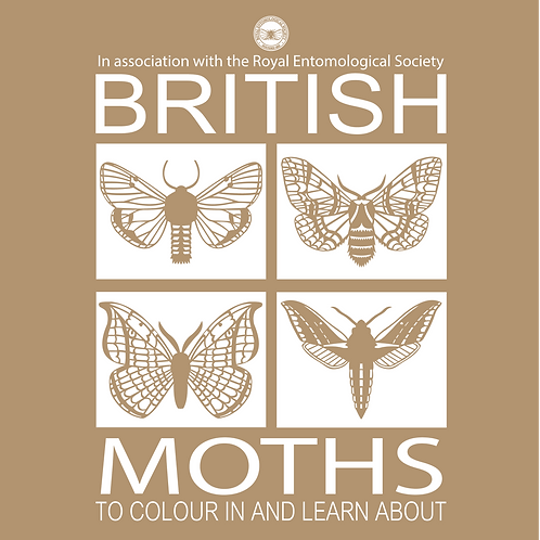 British Moths: To colour in and learn about