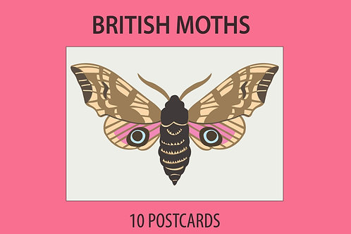 British Moths: Postcard Collection