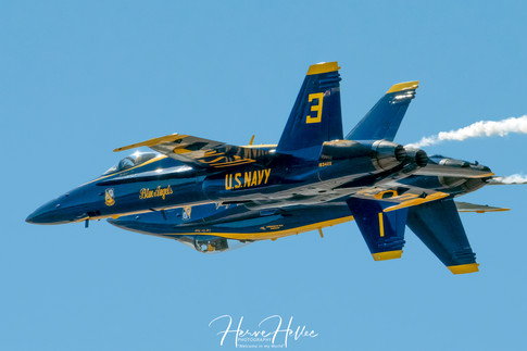 Blue Angels F:A-18 Hornet SIGNEE AAS_013