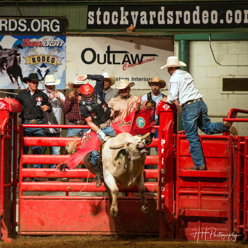 STOCKYARDS RODEO_0008