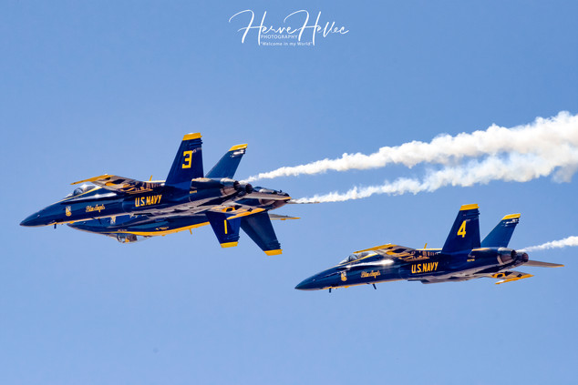 Blue Angels  F/A-18 Hornet AAS_0105