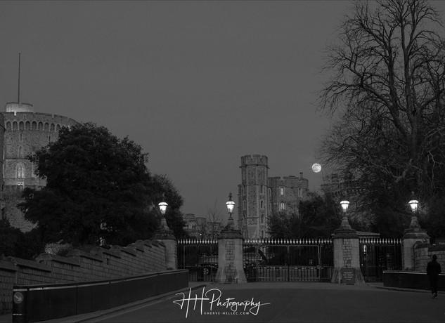 Windsor Castle WIND_0032