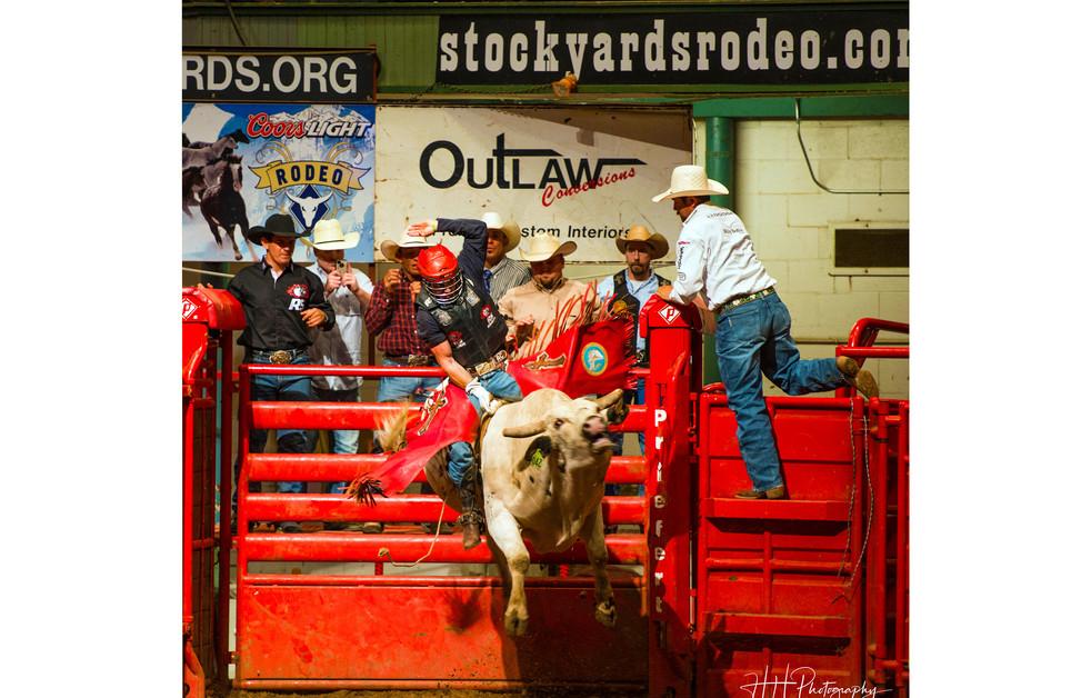 #usa #rodeo 12.jpg