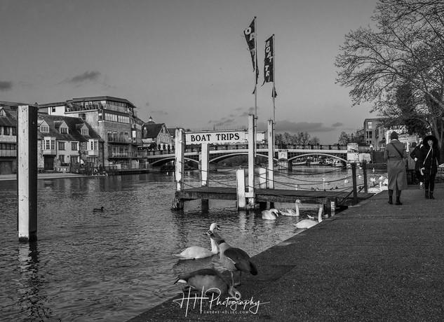 Windsor & Eton river WIND_0035