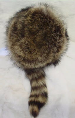 RACCOON HAT LINED W/TAIL