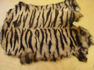 TIGER PRINT RABBIT SKIN