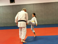 Stage-enfants-aikido-photo7.jpg