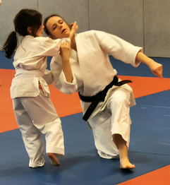 Stage-enfants-aikido-photo9.jpg