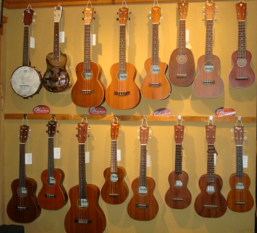 Ukuleles at The Folk Shop