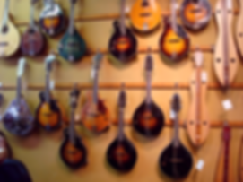 Mandolins at The Folk Shop