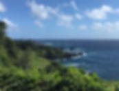 Mauii.jpg