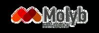 Molyb1_edited.png