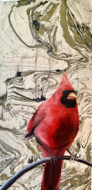 Cardinal #6