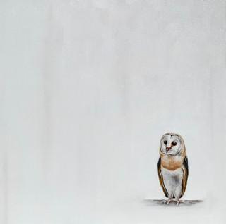Lone Barn Owl