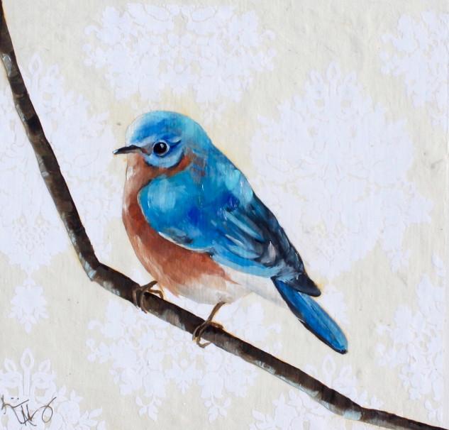 Bluebird #3