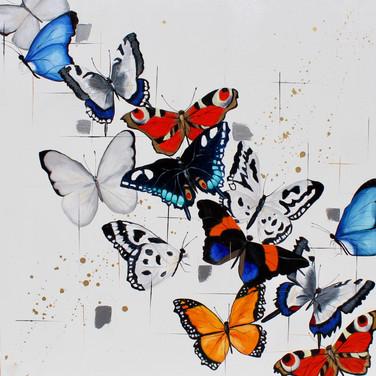 Kaleidoscope of Butterflies #1