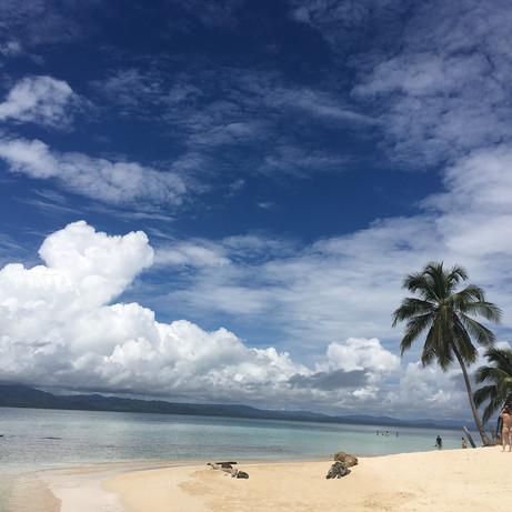 Playa en isla Franklin