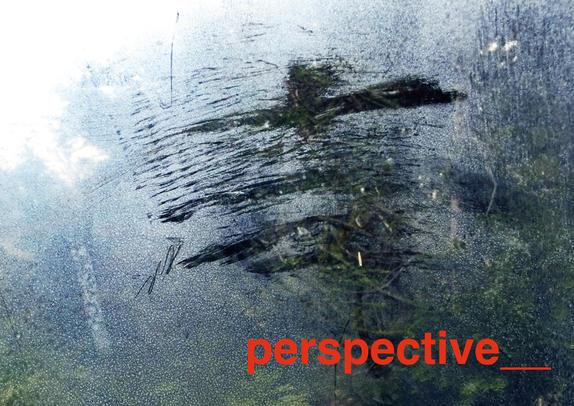 perspective__2-(Seite-01).jpg