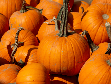 Seven top tips for an amazing pumpkin carving