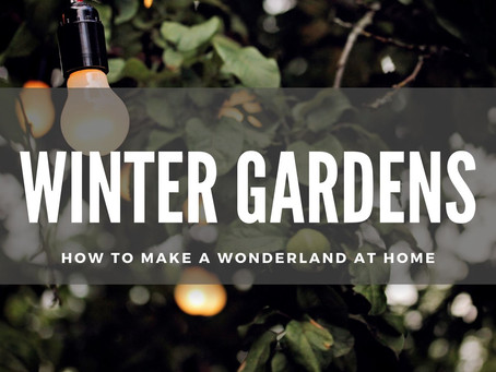 WINTER GARDENS: HOW TO MAKE A WONDERLAND AT HOME