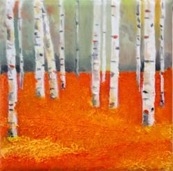 Silver birch in Orange Small