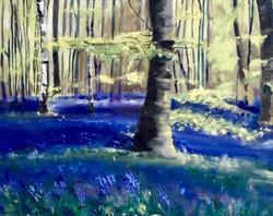 Indigo Woods 2016