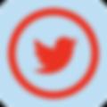 iconmonstr-twitter-5-240.png