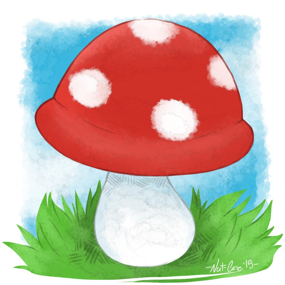 mushroom_orig