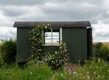 A Shepherd's Hut and British Flowers