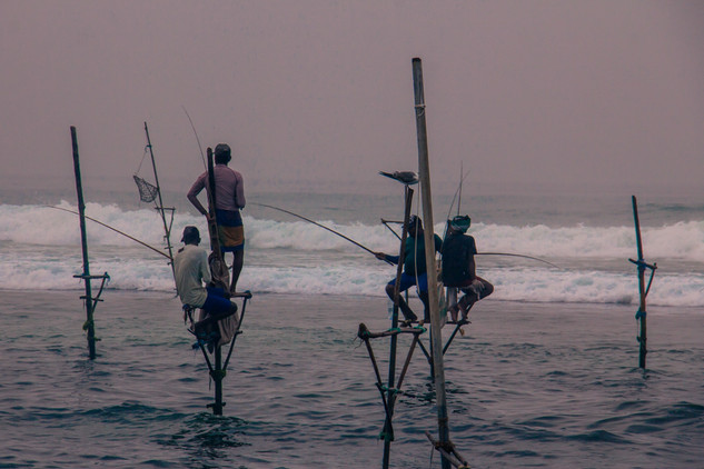 Stilt fishermen in Ahangama © Katharina