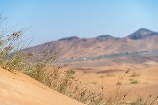 Desert Scenery UAE © Katharina Sunk