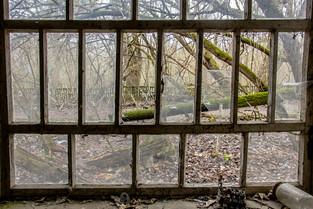 Abandoned town Zalissya © Katharina Sunk