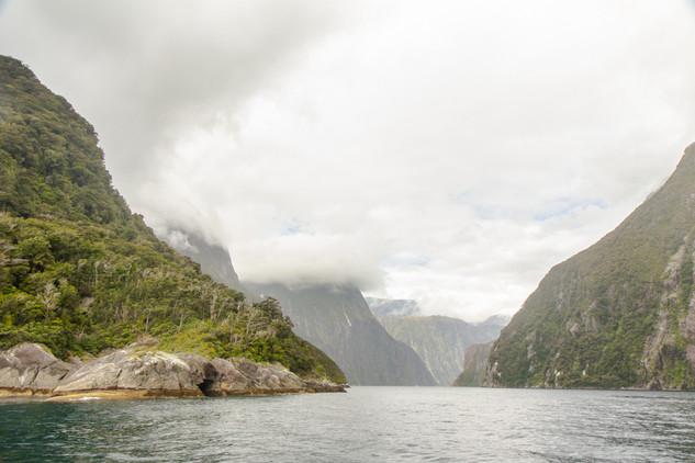 Milford Sound © Katharina Sunk