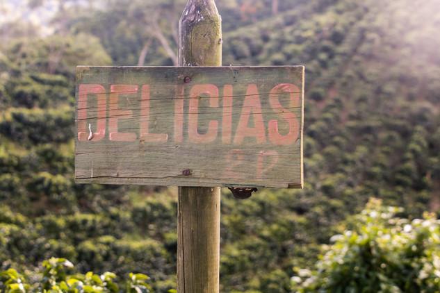 Coffee farm in Antioquia © Katharina Sun