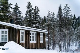 Swedish Winter © Katharina Sunk