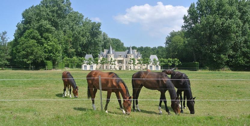 Paardenweide en Arendsslot.jpg
