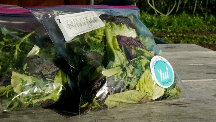 Packaged Local Microgreens