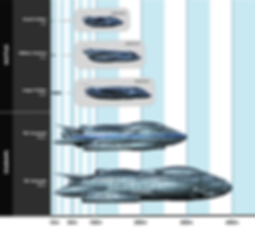 Comparison of ships in the Cadicle Universe