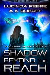 3_Shadow Beyond the Reach_v5 - character