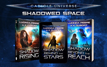 Shadowed Space - collection website.jpg