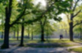 run-5100511_1920.jpg
