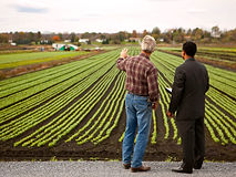 farmer-and-banker-looking-at-crops-10718
