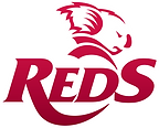 Queensland Reds Rugby Club, Brisbane Lions, AFL, Strength and Conditioning, Junior AFL, Acceleration, Speed, Agility Training